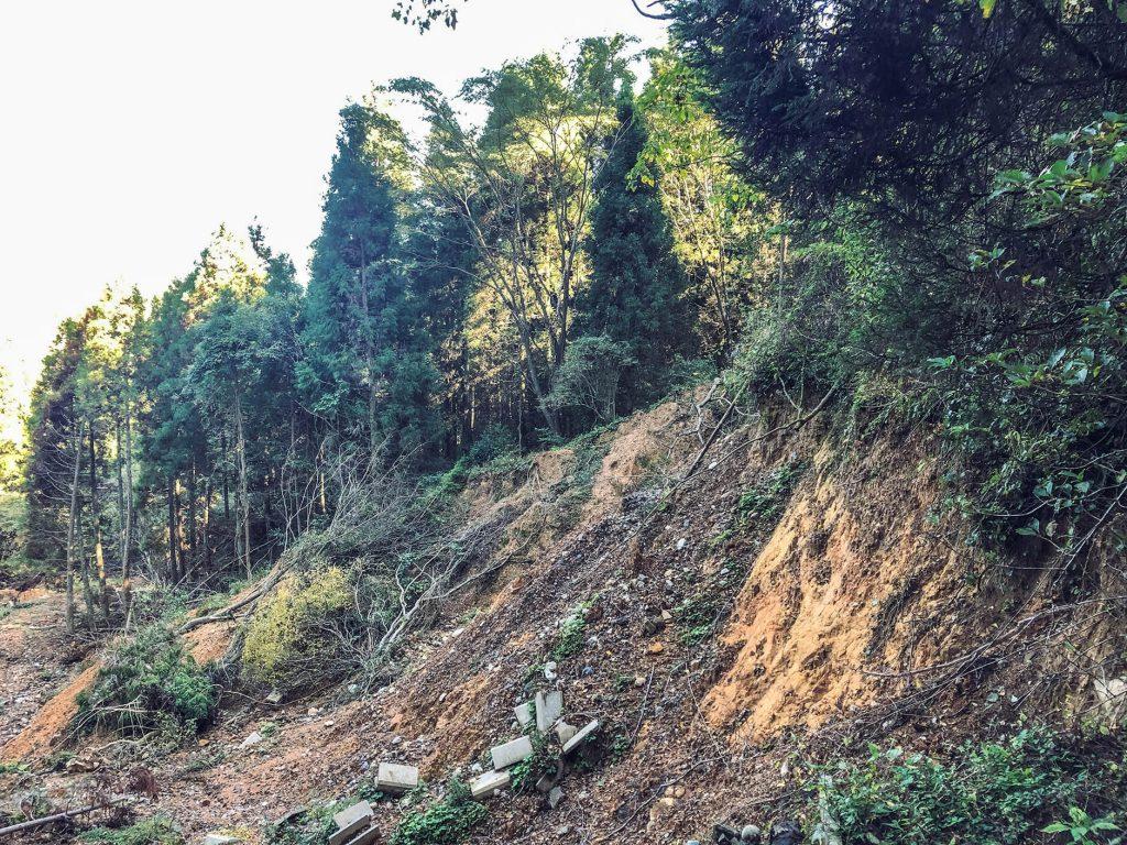 大分県日田市の斜面崩壊によって消失した林道