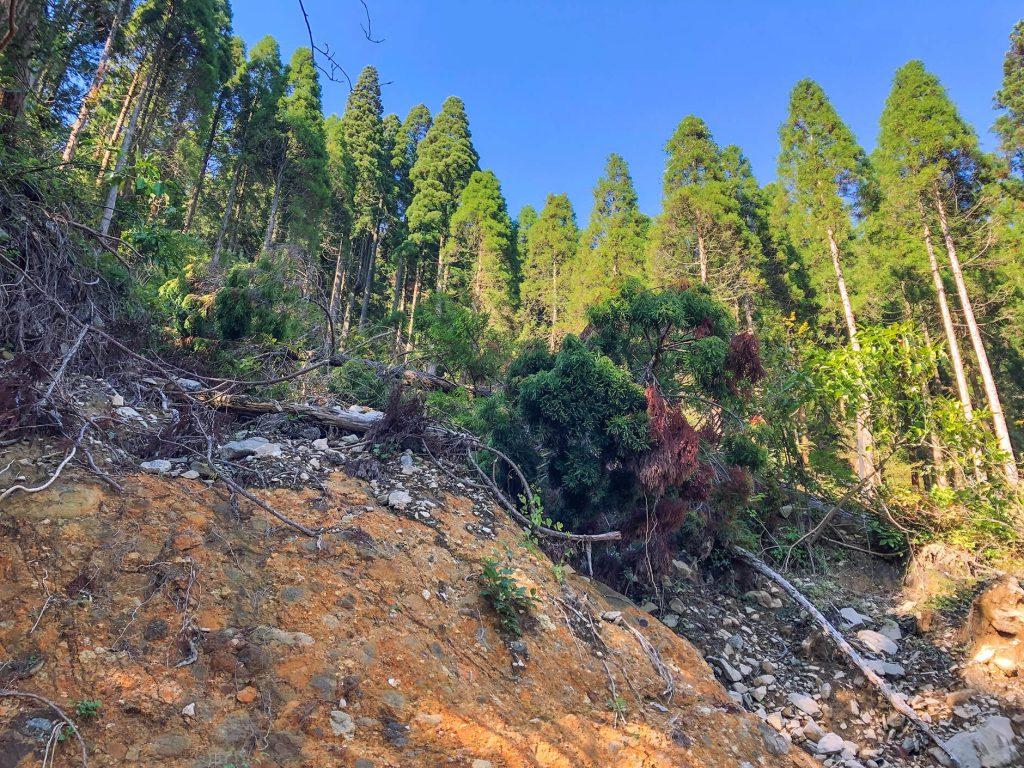 大分県日田市の土石が剥き出しの崩壊斜面